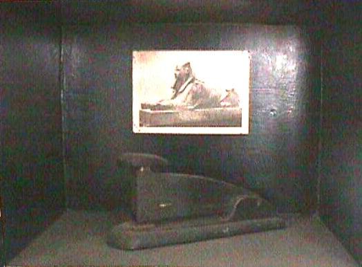 9.sphinx.cojo
