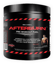 The Art of Fitness:  Afterburn Fuel by Mike Chang